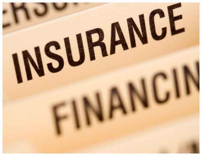 InsuranceFile__BorderLR